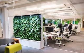 World's smartest green wall Naava introduced to U.S. market