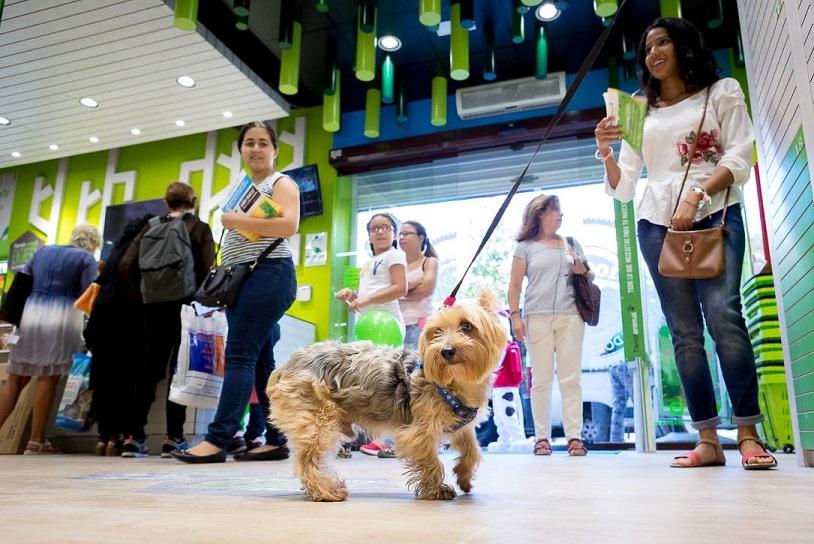 e6147124e902 Tiendanimal, el gigante de productos para todo tipo de mascotas, abrirá  mañana viernes en el Parque Comercial Nevada Shopping (Armilla –Granada–)  su ...